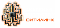 Академия киберспорта Ситилинк